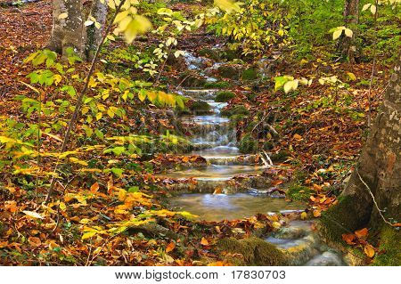 Autumn Mountain Cascade