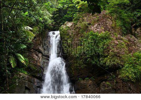 La Mina Falls - Puerto Rico