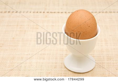 Fresh Brown Egg