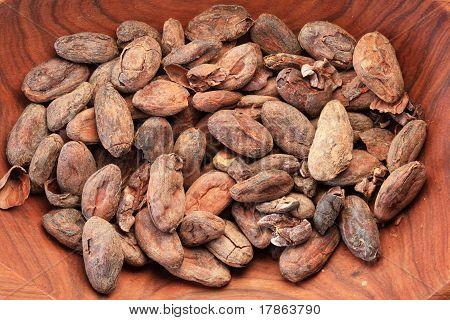 Bowl Of Cocoa Beans