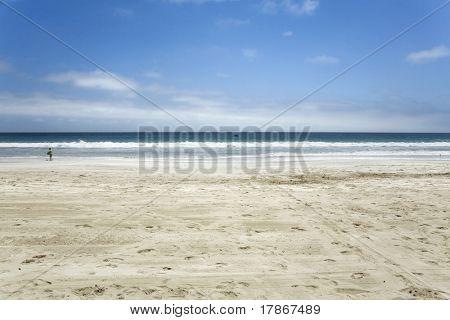 Vista panorámica de un día soleado de la orilla del mar