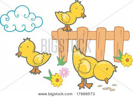Vector Illustration of Chicks