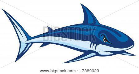 Shark Lineart