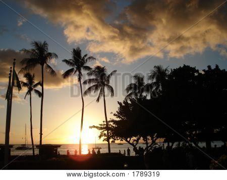 Tropical Dusk - Maui