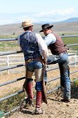 stock photo of brahma-bull  - hard working cowboys looking off in the mountain side - JPG