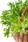 stock photo of escarole  - Curly escarole endive leaves on a basket - JPG