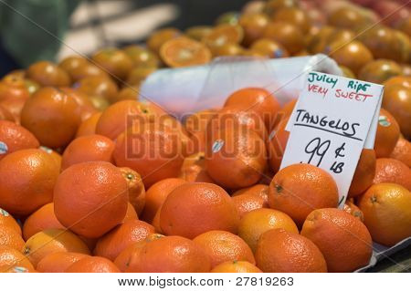 Bushels of Tangelos at the Farmers Market