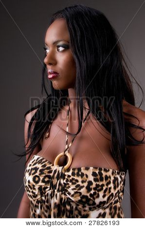 Portrait of a sexy young African American woman in a leopard print mini dress