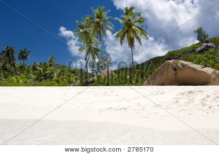 Unspoiled Tropical Beach