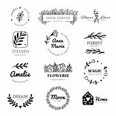 Floral Ornament Logo. Laurel Leaves Wreath Frame, Doodle Flower Leaf Label And Vintage Flowers Ornam poster