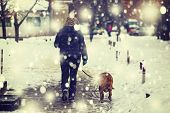 Dog, Winter, Snow, Cold, White, Woman, Lifestyle, Female, Happy, Nature, Forest, Lifestyle, Young, A poster
