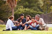 Happy three generation Hispanic family sitting on the grass together in the park, selective focus poster