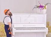 Courier Delivers Furniture, Move Out, Relocation. Man With Beard Worker In Helmet And Overalls Lifts poster