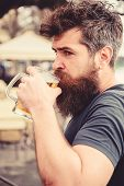 Man With Beard And Mustache Holds Glass With Beer While Relaxing At Cafe Terrace. Guy Having Rest Wi poster