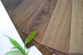 Samples Of Laminate Make A New Floor For Renovate Or New Floor In The House Or The Building Or Comme poster
