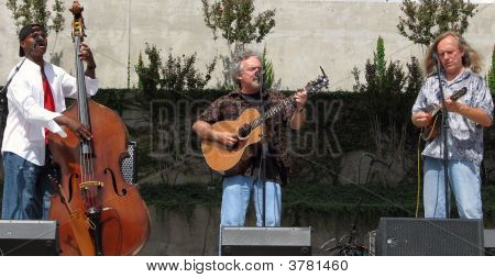 Beatlegrass Bluegrass Group