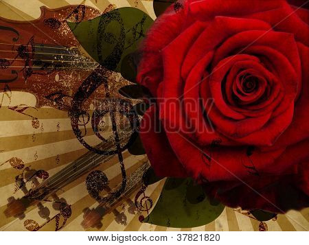 Music Rose And Violin Background