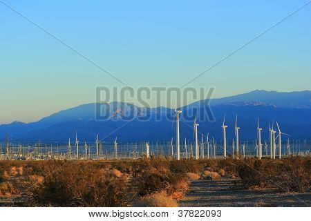 Electricity from California Wind