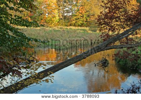 A Michigan River In Fall