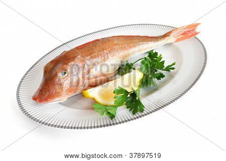 Plated fish
