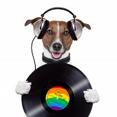 image of dog tracks  - music headphone vinyl record dog holding it  mouth opened - JPG