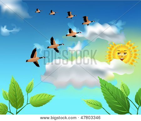 migrating birds flying on the sky