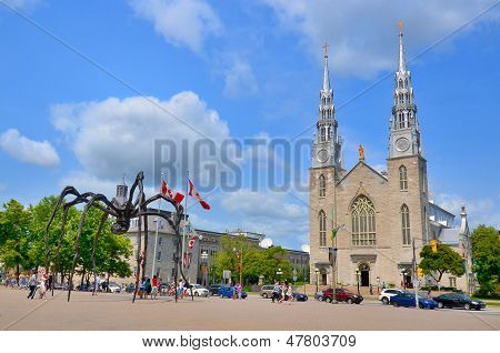 The Notre-Dame Cathedral Basilica and Maman