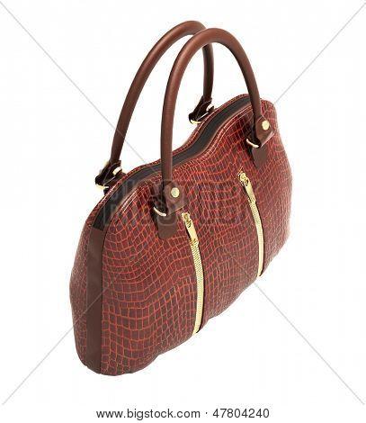 Crocodile leather women's handbag isolated on white background