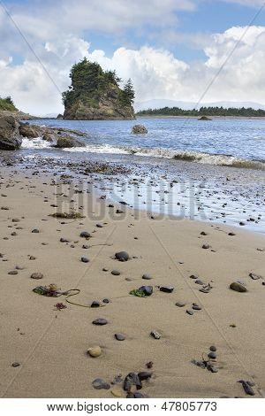 Playa de Oregon Garibaldi