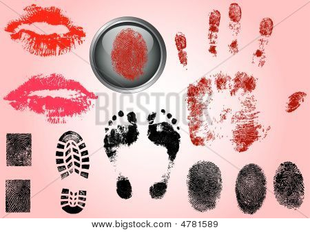 Fingerprints Footprints And Lips