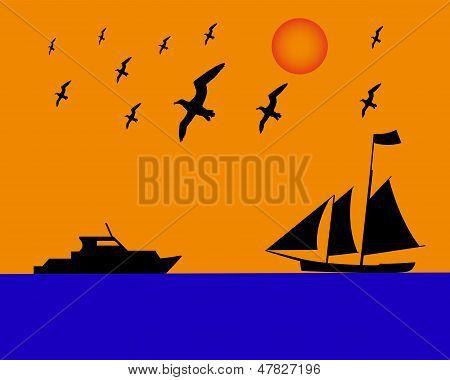 Sailing Boat Albatrosses