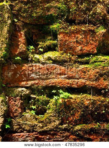Natural background by old bricks