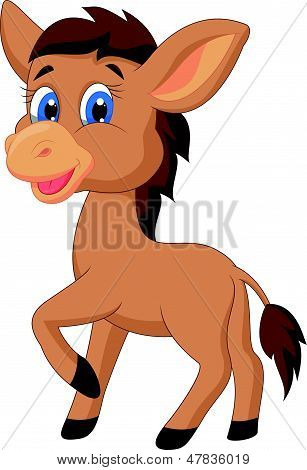 Cute horse cartoon