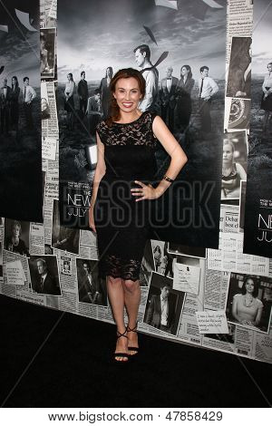LOS ANGELES - JUL 10:  Wynn Everett arrives at the HBO series