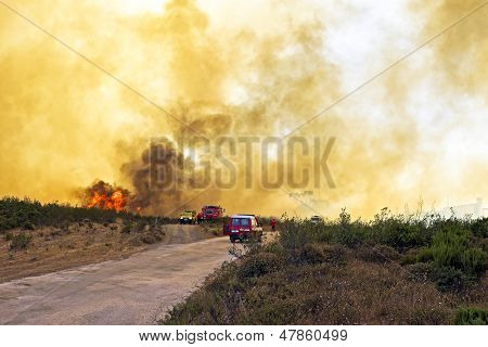 Huge forest fire threatens national park at the westcoast in Portugal