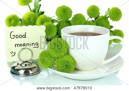 Beautiful green chrysanthemum with cup of tea isolated on white