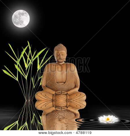 Zen Garden At Night