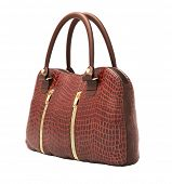Crocodile leather women's handbag isolated on white background