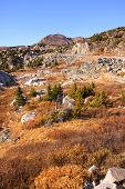 picture of beartooth  - Scenic landscape on the way to beartooth highway - JPG