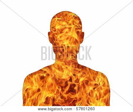 Human Nature Fire