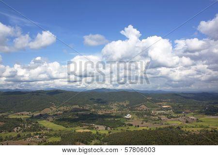 Natural Forest Landscape