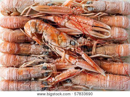 frozen shrimp defrosting