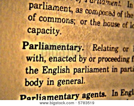 Dictionary Parliamentary