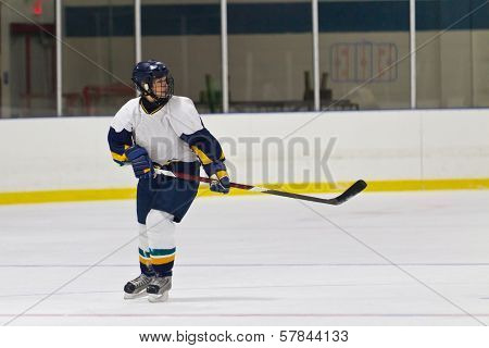 Female ice hockey player skating during a hockey game
