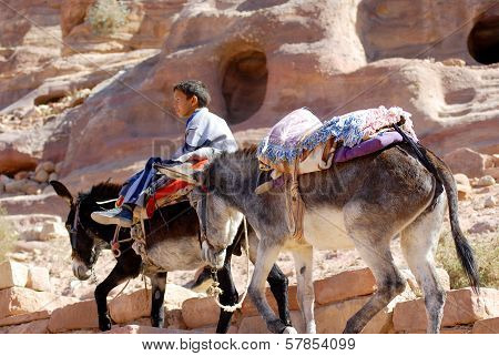 children searches for tourists for donkey ride