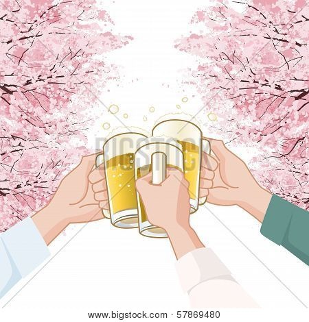 Toasting With Beer Under  Cherry Blossoms Trees