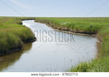 Creek on the Hallig Langeness in the Wadden Sea