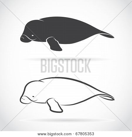 Vector Image Of An Dugong