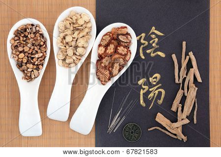 Chinese herbal medicine with acupuncture needles with yin and yang calligraphy script and I ching coin. Translation reads as yin yang.