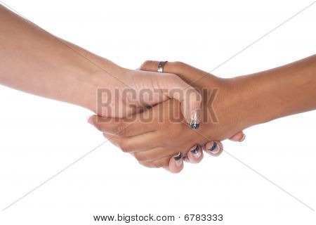 Two Female Hands Shaking